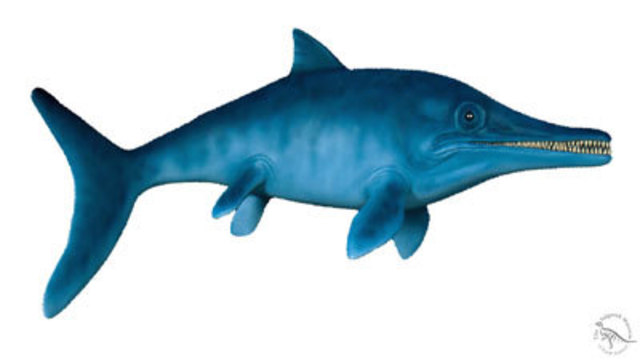 I-Team: New theory of a bigger, badder ancient sea predator