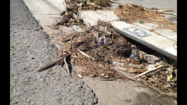 Public Works Clearing Drains Before Next Round of Rain