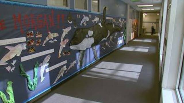 Williams Elementary Students Seek to Free Whale