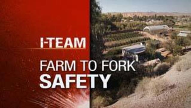 I-Team: From Farm to Fork