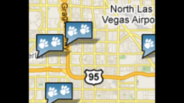 Las Vegas Area Dog Parks