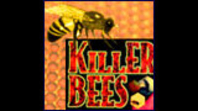 Killer Bees Attack Local Man