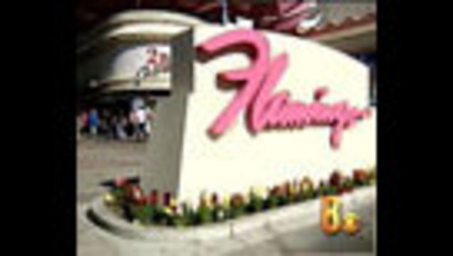 Mysterious Illness at Flamingo Hotel