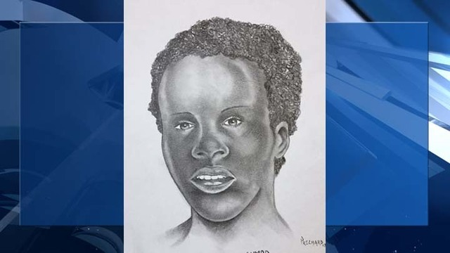 Metro Police hopes sketch will help identify teen killed, burned