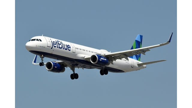 Plane diverted to Las Vegas after man bites passengers