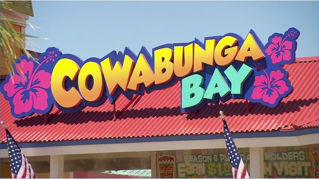 Child pulled from water at Cowabunga Bay
