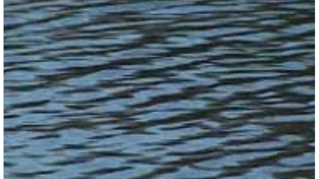 Drowning reported at Lake Mohave