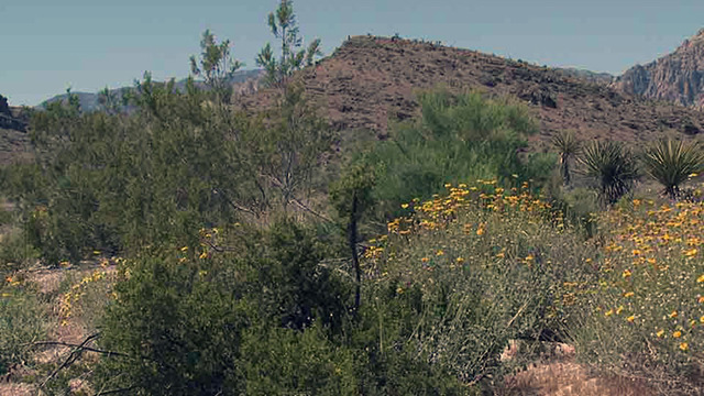 Entrance fees for Red Rock Canyon increasing next month