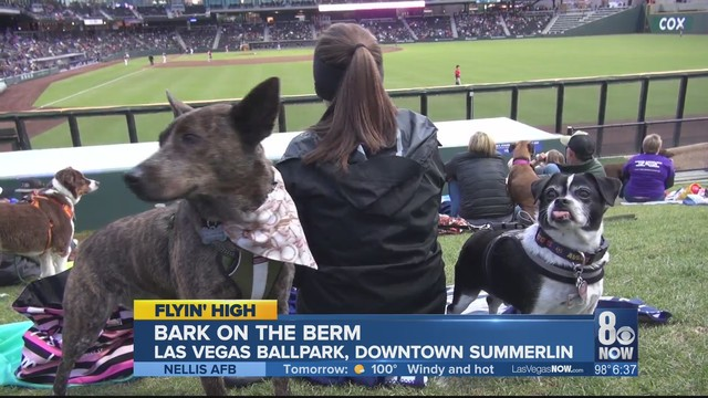 Las Vegas Ballpark welcomes the Dogs